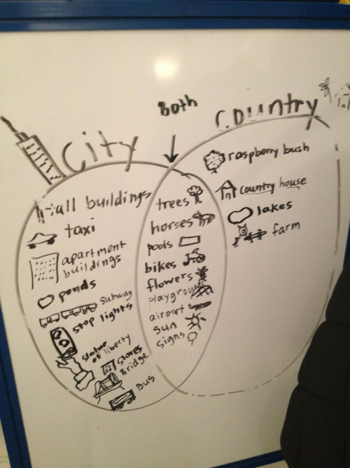 Pre-schoolers venn diagram their experiences of city and country, oblivious of their highly privileged lives…
