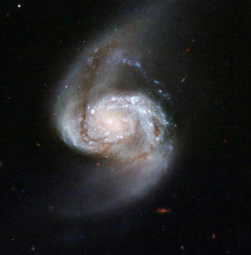 spaceplasma:  Arp 87 Arp 87 is a stunning pair of interacting galaxies. Stars, gas, and dust flow from the large spiral galaxy, NGC 3808, forming an enveloping arm around its companion. The shapes of both galaxies have been distorted by their gravitational interaction. Arp 87 is located in the constellation of Leo, the Lion, approximately 300 million light-years away from Earth. Arp 87 appears in Arp's Atlas of Peculiar Galaxies. As also seen in similar interacting galaxies, the corkscrew shape of the tidal material suggests that some stars and gas drawn from the larger galaxy have been caught in the gravitational pull of the smaller one. This image was taken in February 2007 with Hubble's Wide Field Planetary Camera 2 detector.