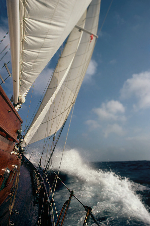 emilanton:  Sailing is an incredible experience!