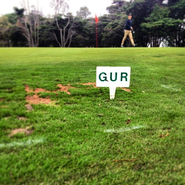 Gurrrrr #golftuesdays #oneparfortheday #albertpark #golf