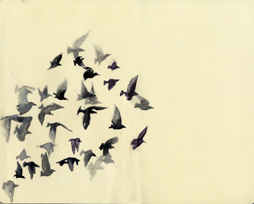 lafleurdesmurailles:  look up series/ flock of birds by mariedraws on Flickr.