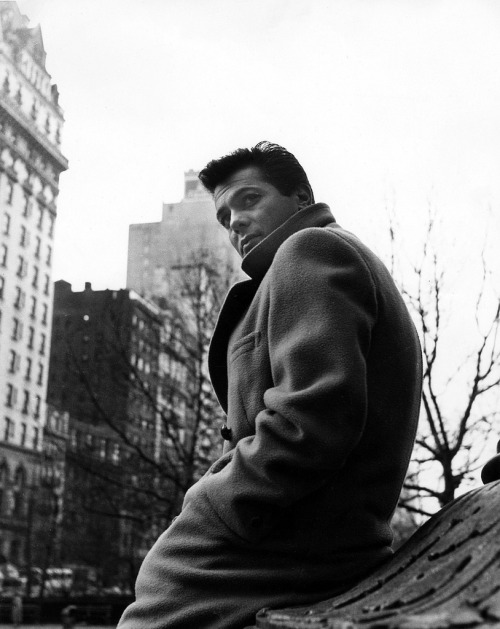 theniftyfifties:  Tony Curtis