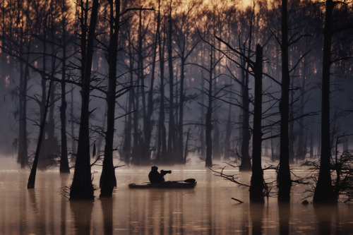 evacuat:  On the Bayou by Michelle Morris