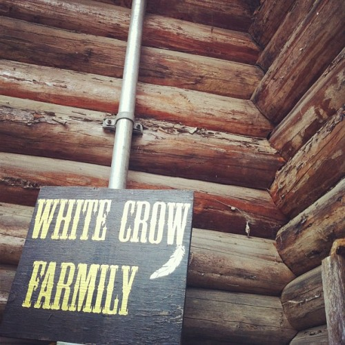 It's been incredible to finally see what White Crow Farm is all about. The Slocan Valley has been beautiful and hot this weekend. Yesterday was a full-on celebration of music, workshops, and food. Feeling blessed and glad to be here for another couple days! (at White Crow Farm)
