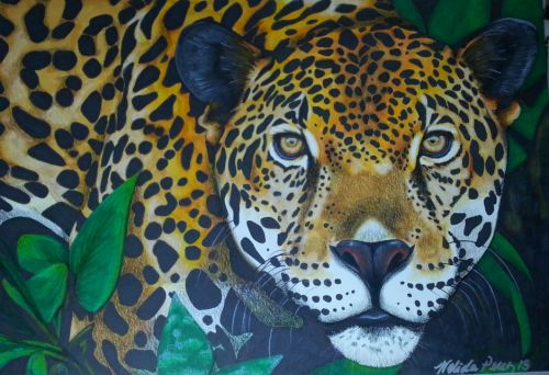 My Jaguar drawing
