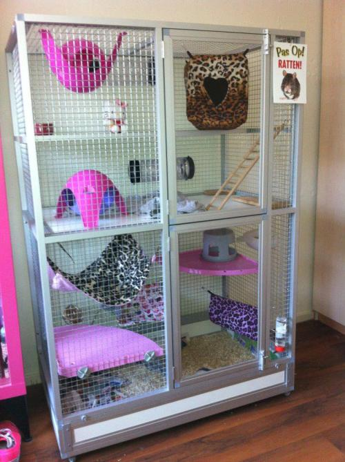 noom-noom:  Basically what my dream rat cage would look like :3