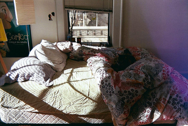 moanarch:  i love my bed, can you tell? by allisonsara on Flickr.