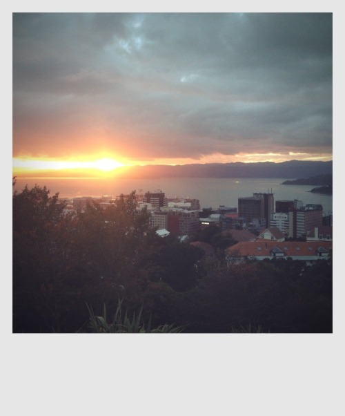 sunrise in Wellington this morning [ about 5mins after this was taken, it poured down ]