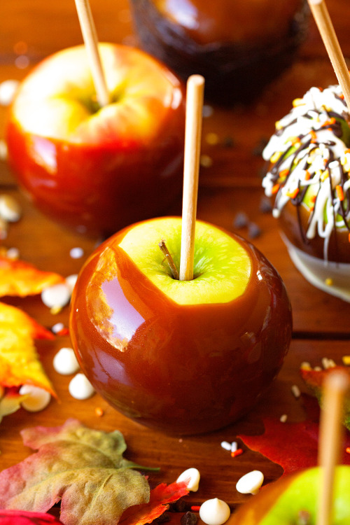 Food chocolate halloween dessert recipe fall apple autumn for Caramel apple recipes for halloween