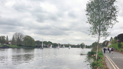 #weekend #walkers and #sailboats along the #RiverThames #thames #thamespath #london #uk #greatbritain #britain #kingston #teddington on Flickr.