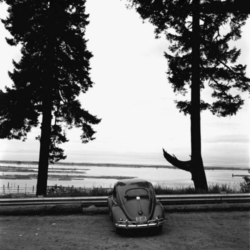Early VW Bug… aquaticwonder: Solitude