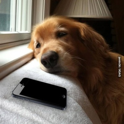 Me waiting for a reply from my crush.
