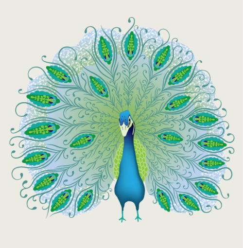 Just for fun: A Peacock Decorative Design