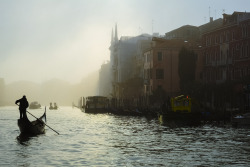 bruisedandleftbehind:  early morning mist in Venice - © Carsten Heyer