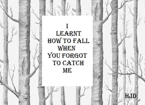 black and white fall hjd i learnt