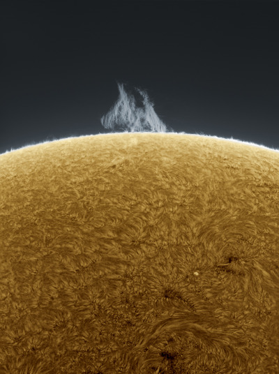 The Sun formed about 4.6 billion years ago from the gravitational collapse of a region within a large molecular cloud. Most of the matter gathered in the center, while the rest flattened into an orbiting disk that would become the Solar System. It is thought that almost all other stars form by this process.