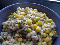 "corn and barley salad w/ a lemon-chive vinaigrette from ""in the small kitchen"" such a quick & easy vinaigrette; i got the recipe from their cookbook and it included dijon, white wine vinegar and honey."