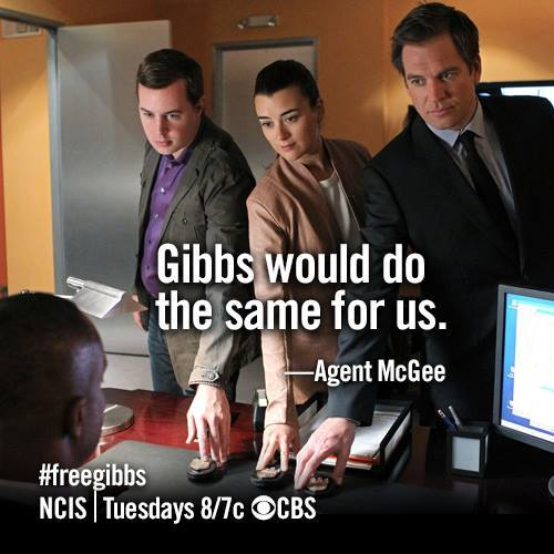 navyyardarchives:  NCIS 10x24 Dammed If You Do