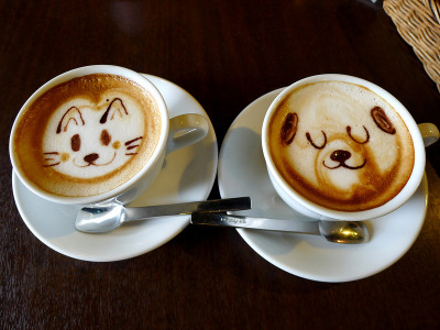 cat and dog latte art via MRSY