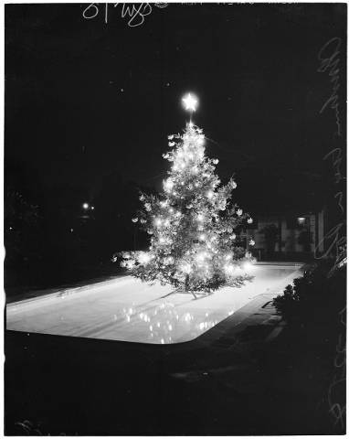 Night Lighting of Christmas Tree in swimming pool, 5745 Hill Oak Drive in Hollywood Hills, 1954.
