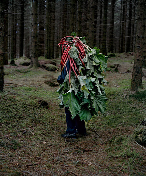 michaelgeorgiou:  Riitta Ikonen and Karoline Hjorth Eyes as Big as PlatesHIGHLIKE http://highlike.org/