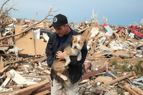 menandtheirdogs:  Sean Xuereb recovers a dog from the rubble of a home that was destroyed by a tornado on May 21, 2013 in Moore, Oklahoma.