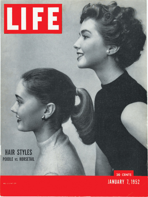 life:  LIFE magazine asking the tough questions: Poodle vs. Horsetail?