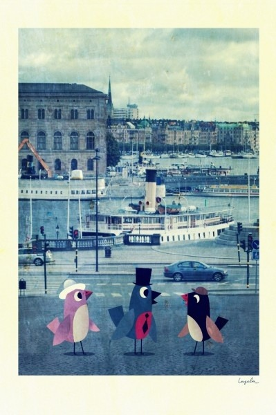 richters:  Poster Birds in Stockholm by Ingela Peterson Arrhenius