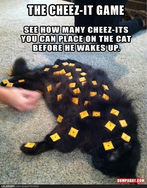 thelolbraryblog:  Cheese it gameFollow this blog for the best new funny pictures every day