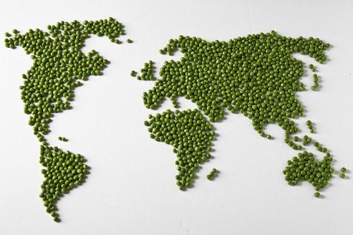 nicoleeatsclean:  mesomorphic-junkie:  World peas.  Hahaha WORLD PEAS. Get it? GET IT???