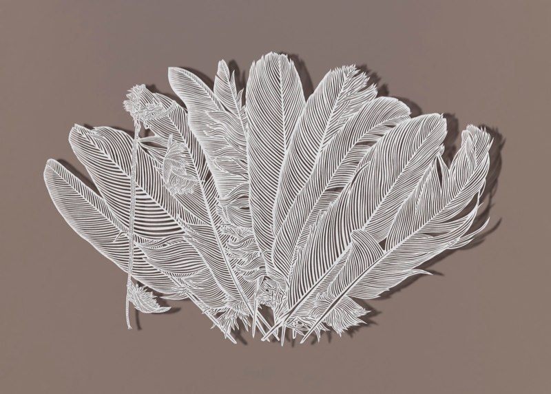 staceythinx:  Intricate paper cuts by Bovey Lee