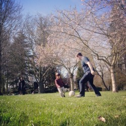 Sunny #spring , playing #football #soccer with papa under #sakura #cherry blossom trees