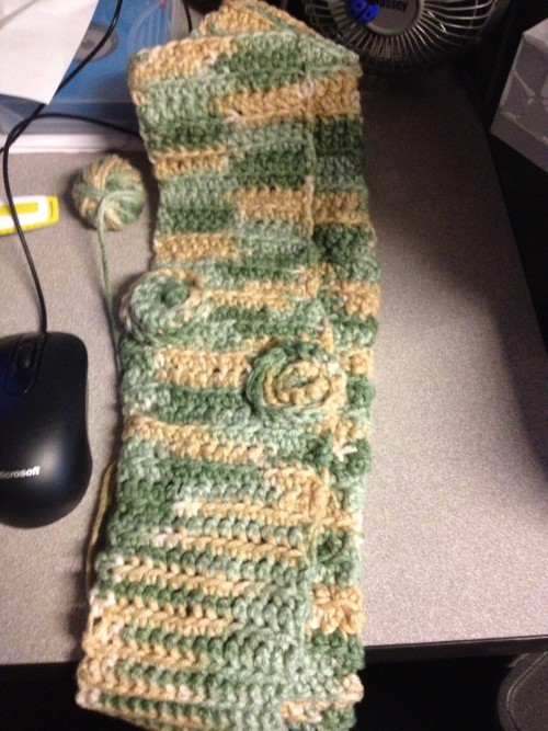 Finished a scarf I crocheted.  Now to learn more stitches!