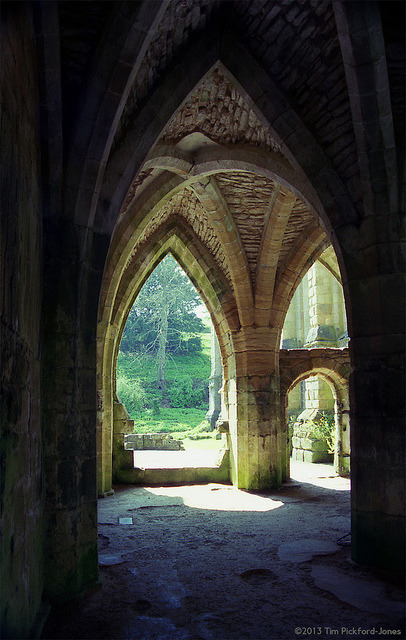 FAA12 Fountains Abbey - Warming Room Vault by HairyHippy on Flickr.