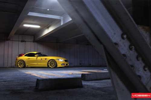 automotivated:  BMW Z4 (by ayo andrsn)