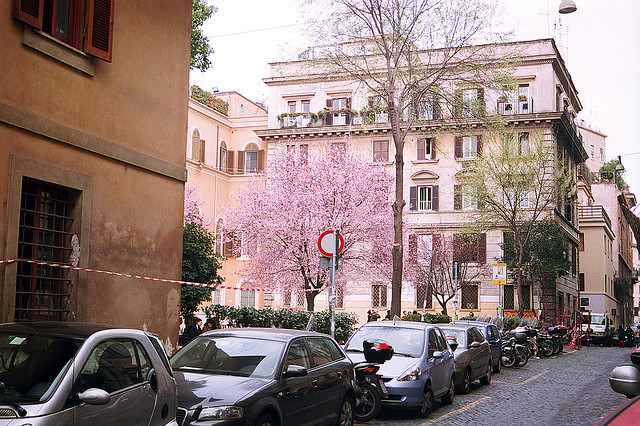 | ♕ |  Primavera - backstreet in Rome  | by © julencin2000