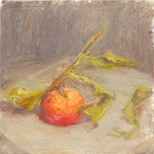 Satsumas Orange, oil on canvas board, 6 x 6 inches, 2012 $125, domestic USPS shipping and handling included in price. Click Shipping Details for UPS shipping. Transactions accepted via PayPal, please contact the artist.