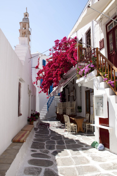 santoriniblog:  Street of Mykonos By Maggie & David