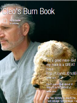 Flipboard | Cleo's Burn Book | Terriers Rule! About Cleo and the owner who disappoints her
