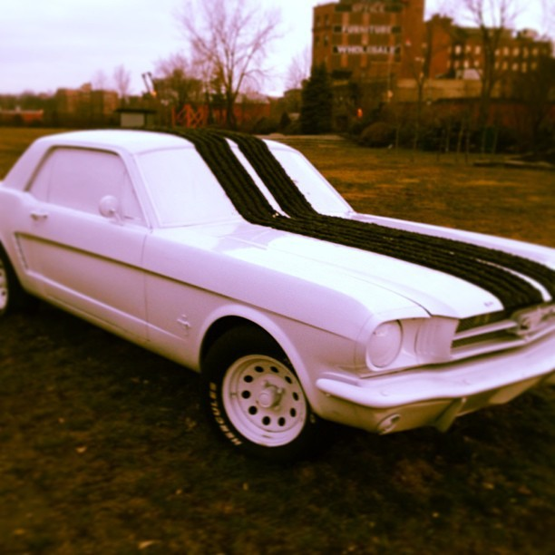 My all time favorite car a 1965 Ford Mustang turned into a piece of sculpture by artist Hugh Hayden. On display in Socrates Sculpture Park. #art #mustang #lic