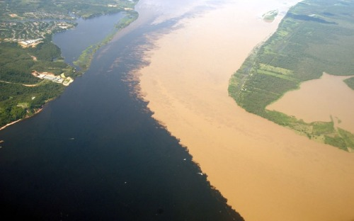 thinking-vanishing:  The meeting of both the Rio Negro and Solimoes Rivers at the city of Manaus. These two rivers run parallel to each other for up to 10 kilometers before they start to mix with one another.