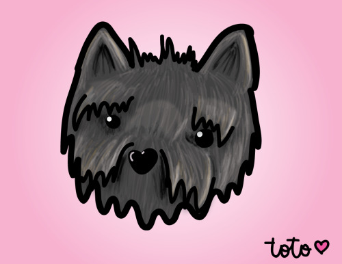Toto   Illustrator CS5.1/ Bamboo Wacom