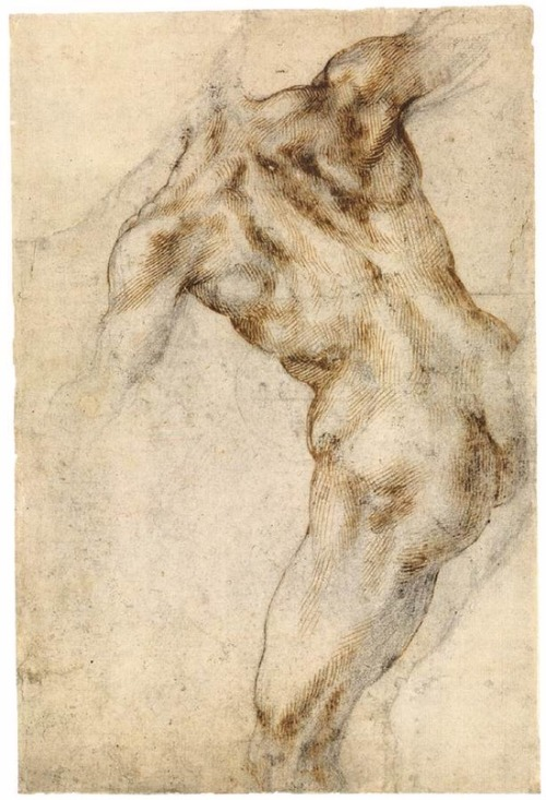 Michelangelo Buonarroti Male Nude, Seen from the Rear (recto)  Black chalk, pen and brown ink 260 x 170 mm 1503-04
