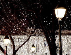 mifaigirarelatesta:  Holiday Sparkle, Paris Style / nichole
