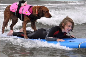 Ricochet, Amazing Dog With Surf Spirit Brings Hope To Kids Ricochet, an amazing golden retriever that loves the water has found the perfect balance to…View Post