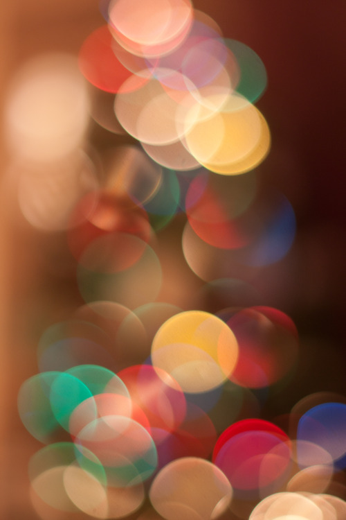 Mandatory Christmas Tree Bokeh…