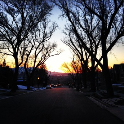 socialcordial:  #utah #winter #sunset #saltlakecity #SLC #sugarhouse #trees #life