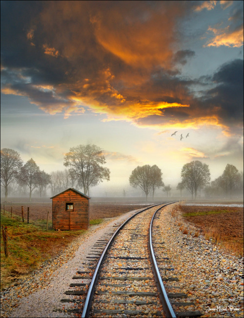 bluepueblo:  Sunset Tracks, Alsace, France photo via kim
