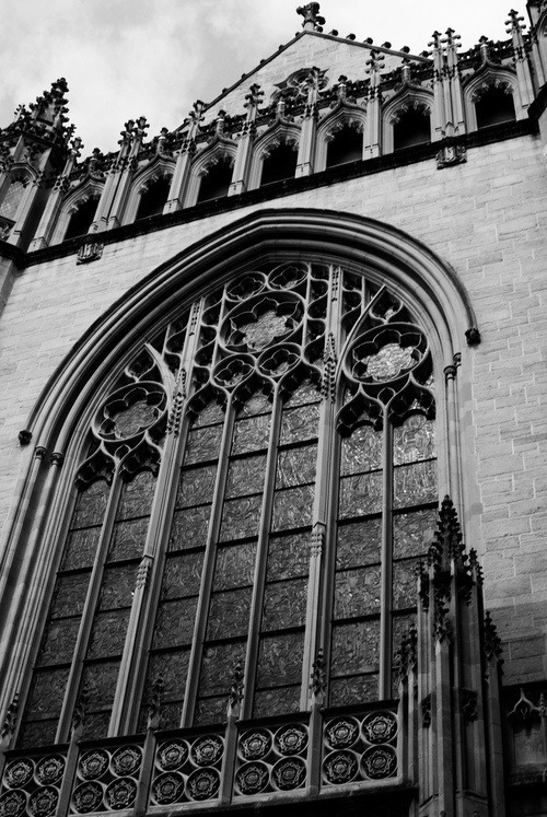 Gothic architecture / churches in black and white