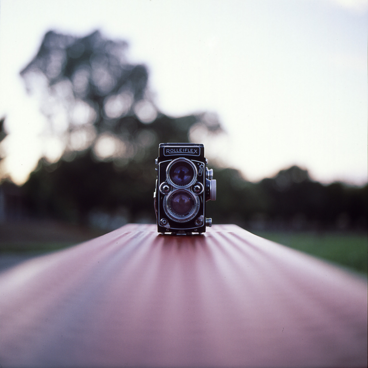 istillshootfilm:  Film Photography Submission By: Diyosa Carter   -Rolleiflex SL66, Fuji FujiChrome Provia 400x-Ricky's Rollei: http://www.flickr.com/photos/diyosa/6277079888/in/set-72157626259825709